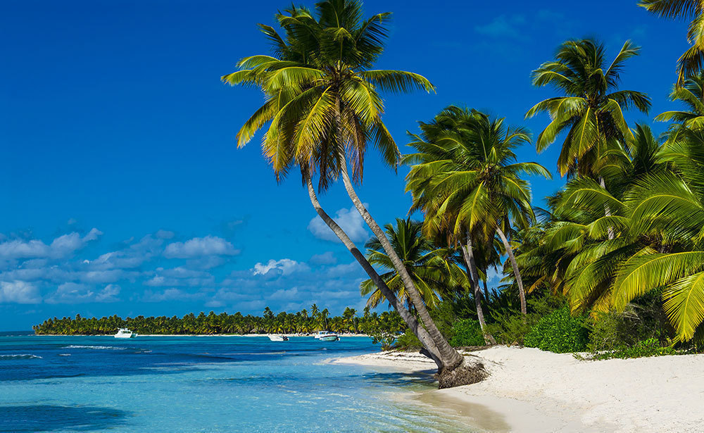 ドミニカ島