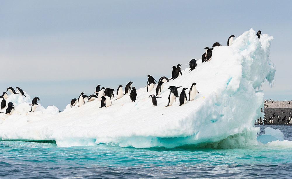 南極(イメージ)