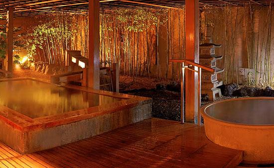 湯の川温泉・花びしホテル