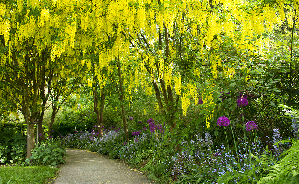 バンデューセン植物園