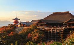 【2022未来フェア】日本周遊13日間 《バルコニー客室限定》 お2人で44万円!