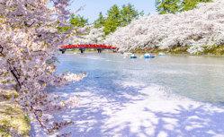 春の日本周遊クルーズ15日間